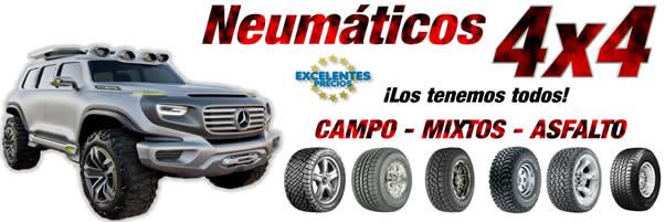 NEUMATICOS 4X4